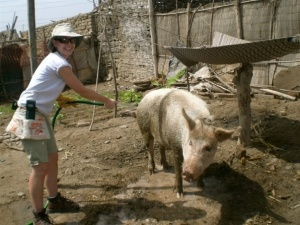 Washing my friend Soledad's pig in Peru in 2008